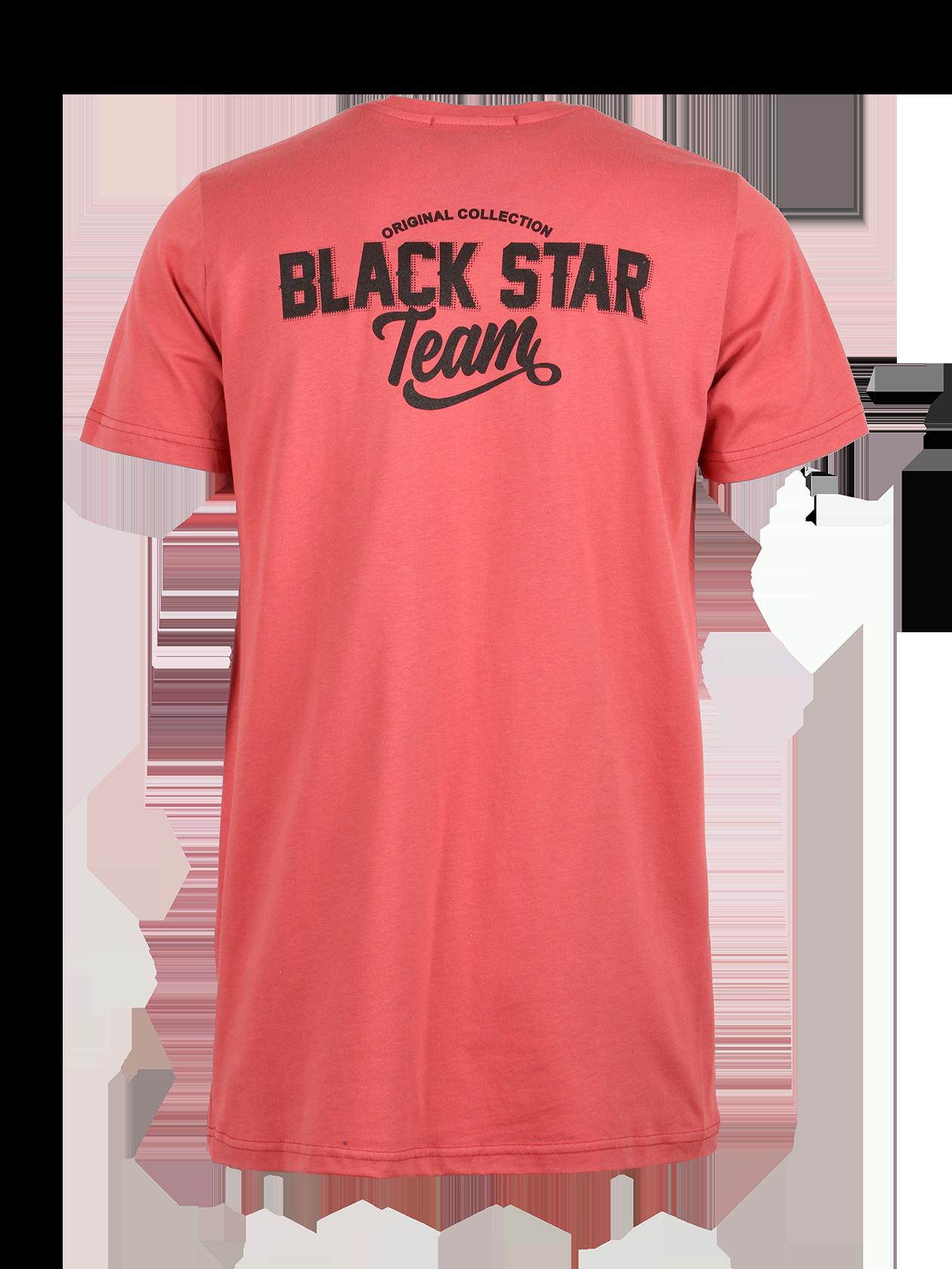 Mens t-shirt LION TEAM от BlackStarWear INT