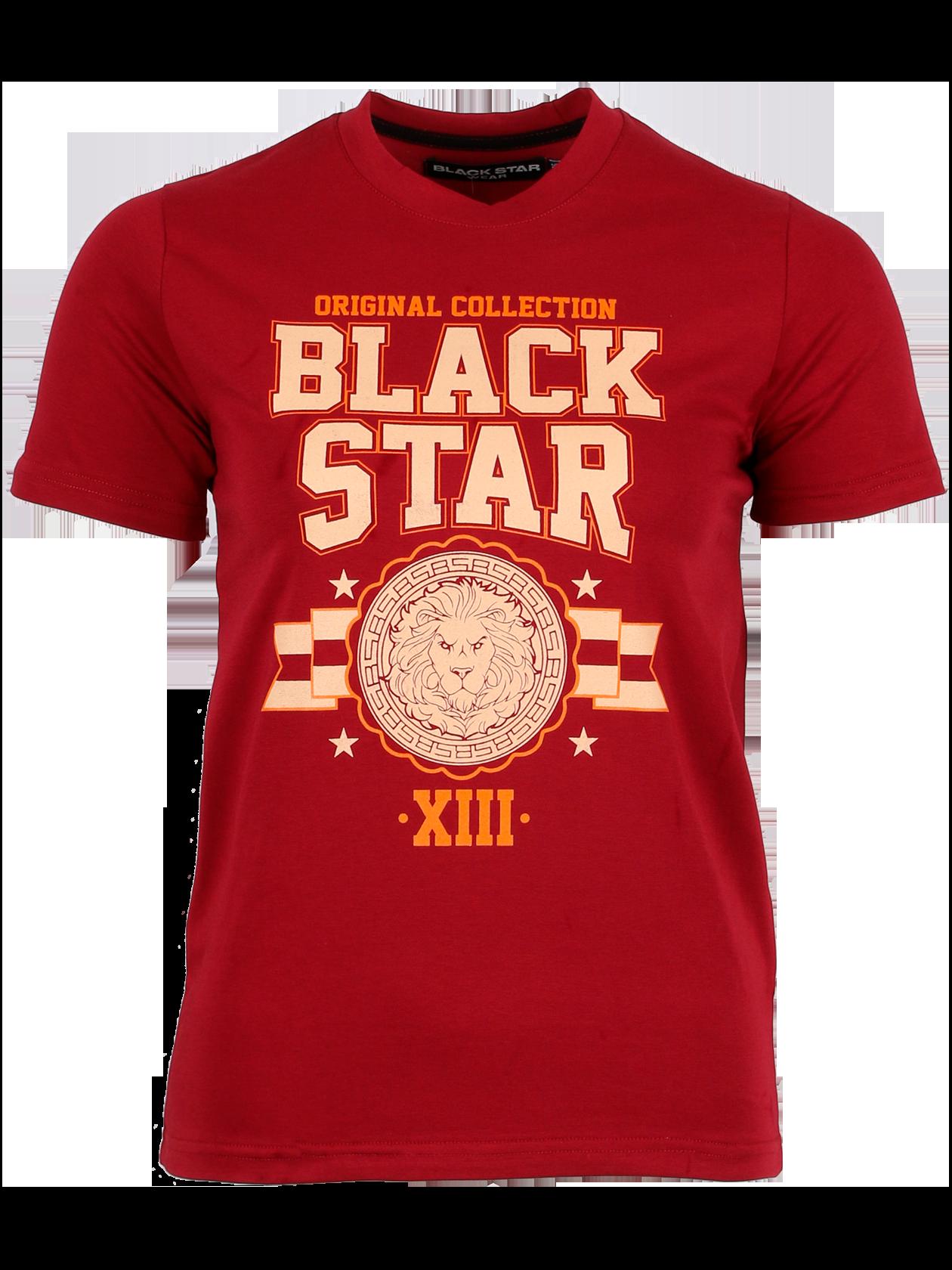 Kids t-shirt ORIGINAL COLLECTION от BlackStarWear INT