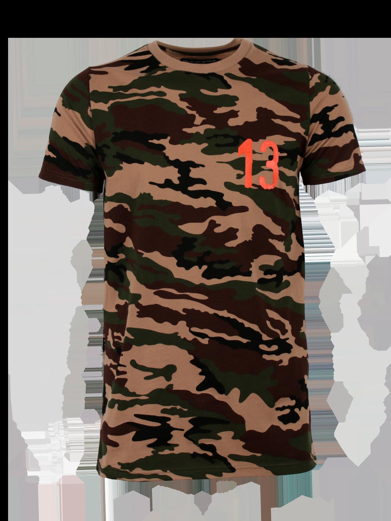 Teens t-shirt PROPERTY OF RUSSIAФутболка подростковая Property of Russia камуфляжной расцветки с белой цифрой 13 на груди. Фасон модели прямой, свободный, удлиненный. Округлая горловина дополнена эластичной окантовкой и жаккардовым лейблом Black Star Wear на внутренней стороне спинки. Модель сшита из натурального хлопка высокого качества, сохраняющего форму после частых стирок. Практичный и стильный вариант на каждый день.<br><br>size: 12-14 years<br>color: Camouflage/Orange<br>gender: unisex